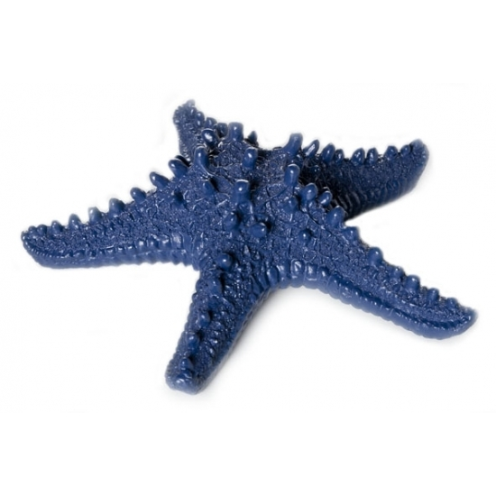 Zeesterren decoratie donkerblauw 16x4x15cm