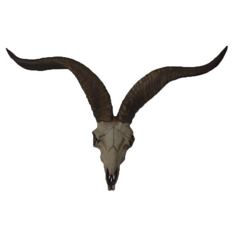 Decoratie antilope schedel met hoorns 65 cm