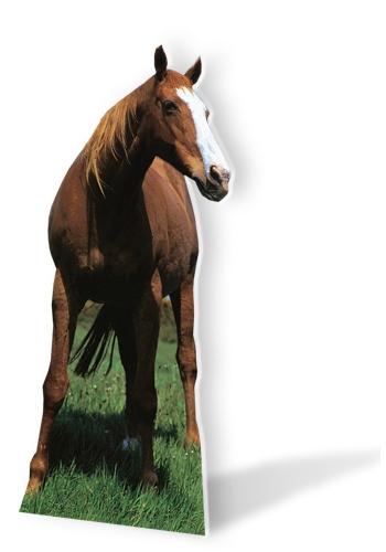 Groot decoratiebord van een paard 190 cm