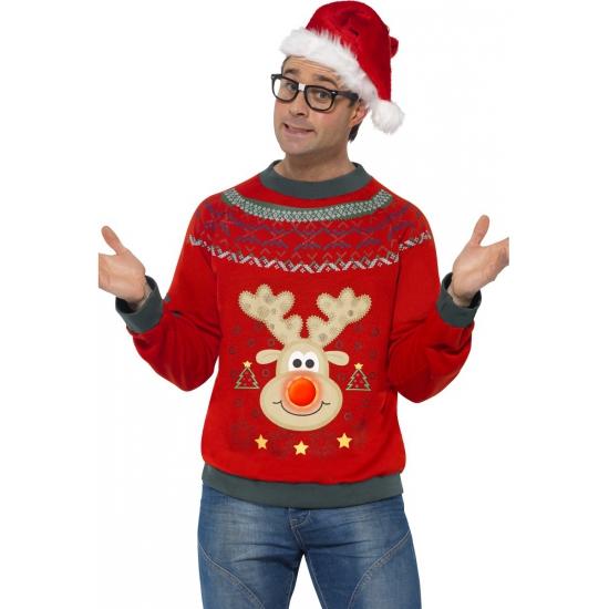 Kerstmis trui rendier met licht
